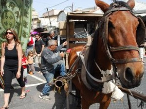 Horse, cart and a heavy load in Yaffo